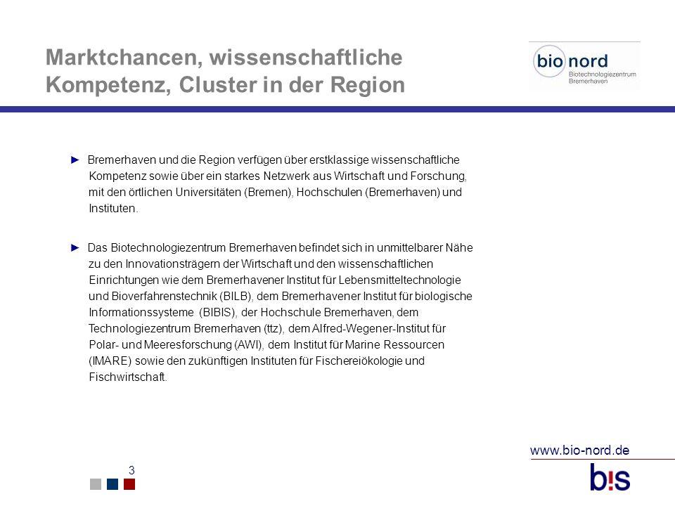 Marktchancen, wissenschaftliche Kompetenz, Cluster in der Region