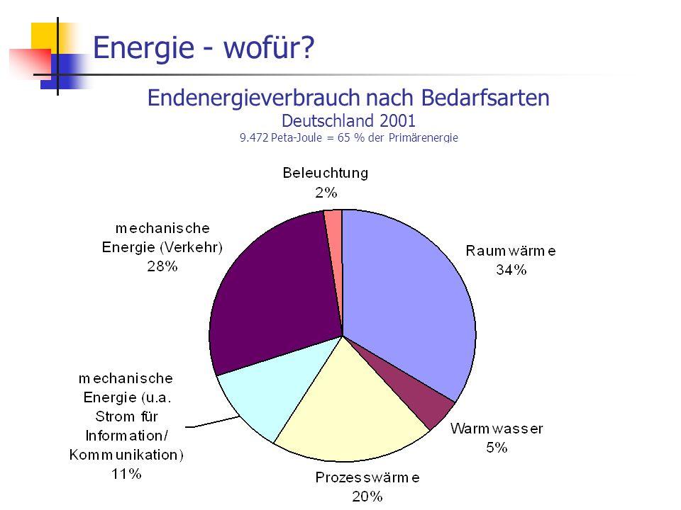 Energie - wofür Endenergieverbrauch nach Bedarfsarten