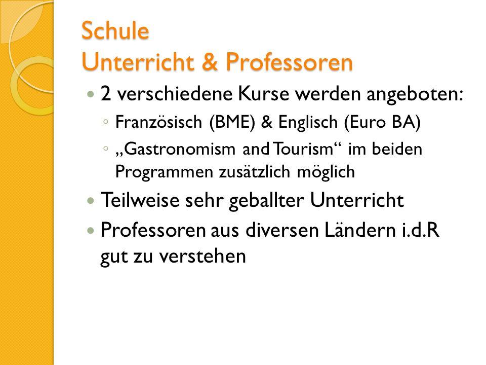 Schule Unterricht & Professoren