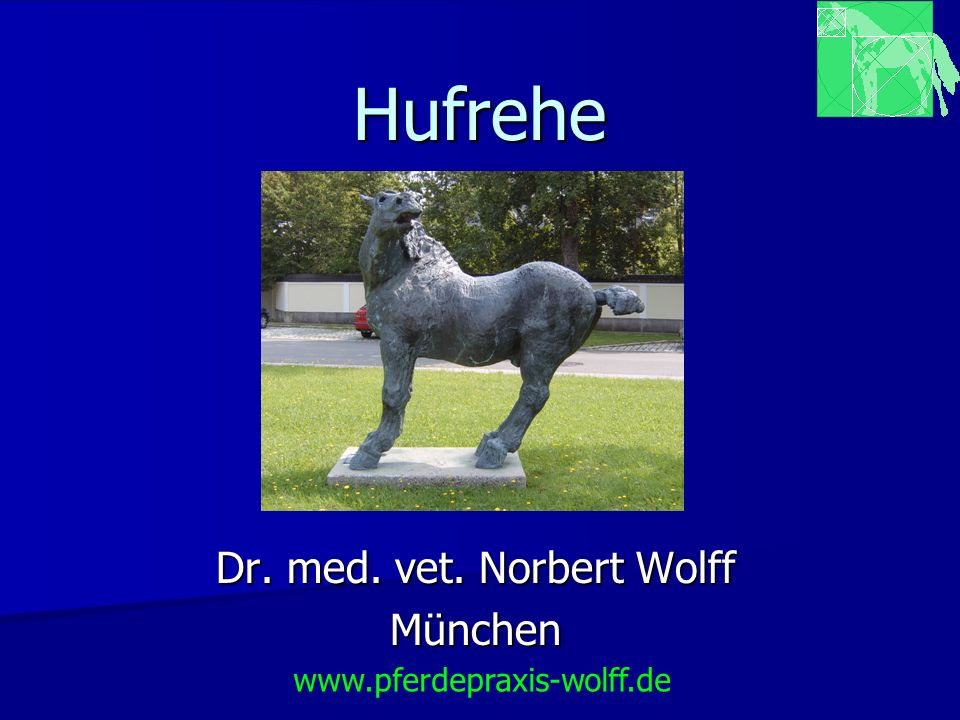 Dr. med. vet. Norbert Wolff München
