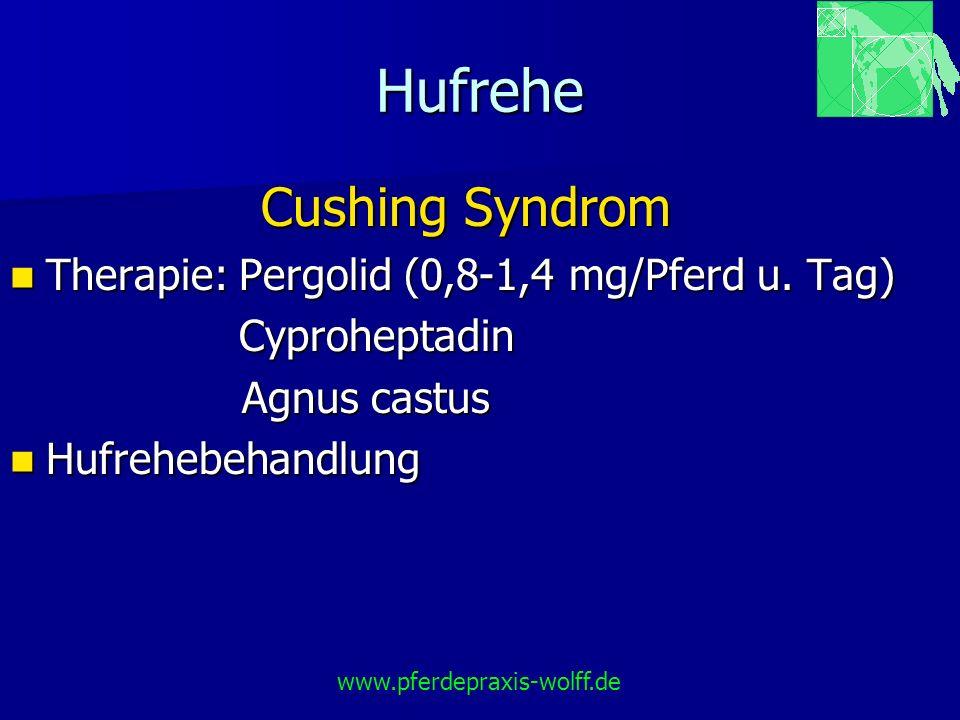 Hufrehe Cushing Syndrom Therapie: Pergolid (0,8-1,4 mg/Pferd u. Tag)