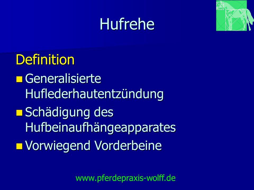 Hufrehe Definition Generalisierte Huflederhautentzündung