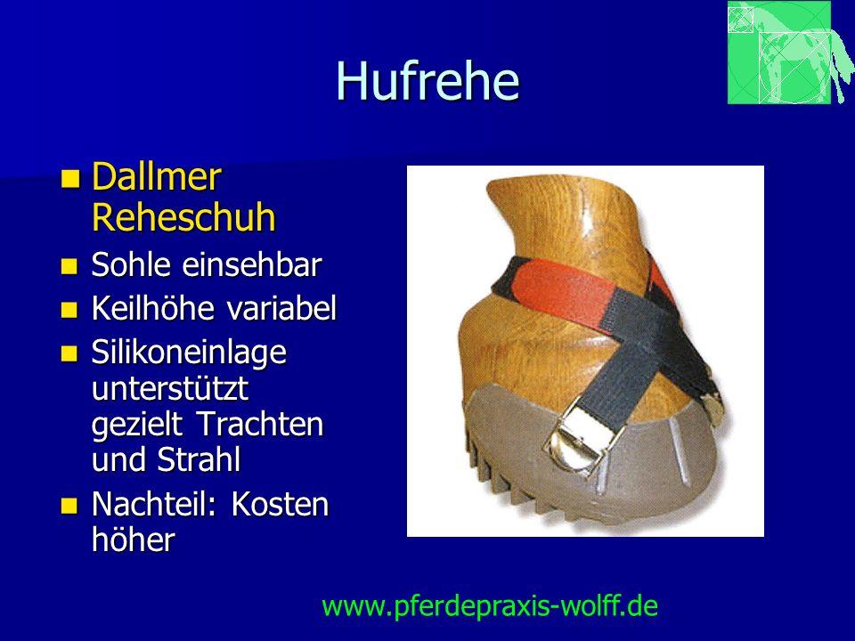 Hufrehe Dallmer Reheschuh Sohle einsehbar Keilhöhe variabel