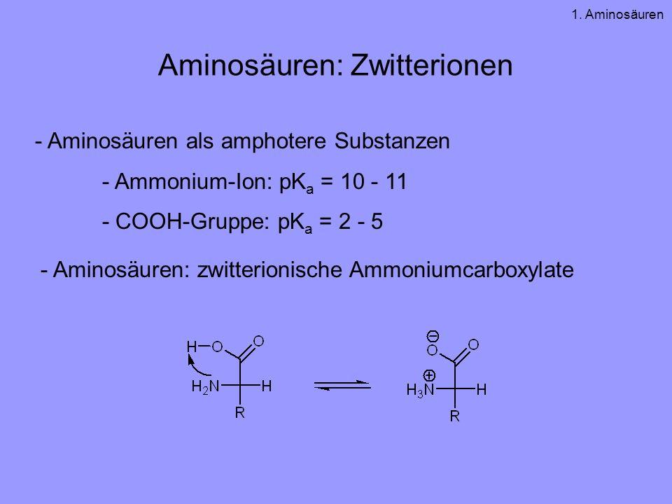 Aminosäuren: Zwitterionen
