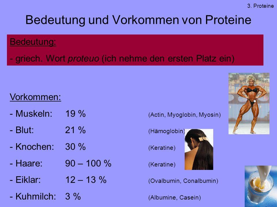 Bedeutung und Vorkommen von Proteine
