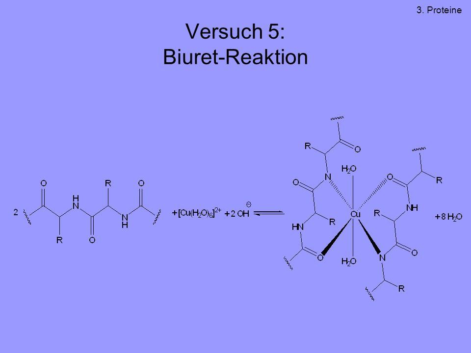 Versuch 5: Biuret-Reaktion