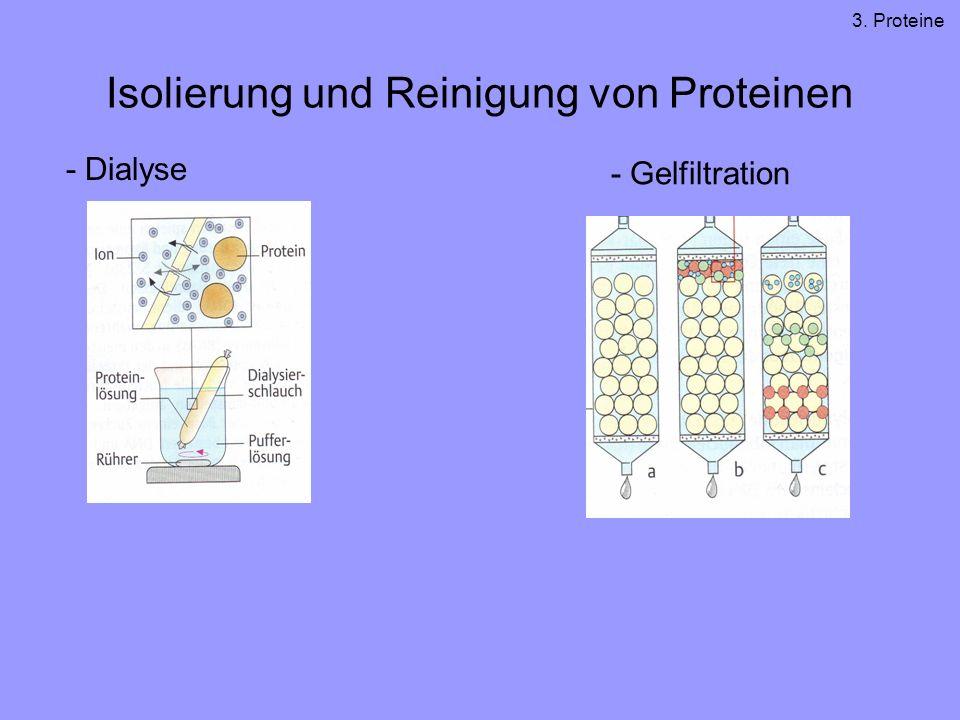Isolierung und Reinigung von Proteinen