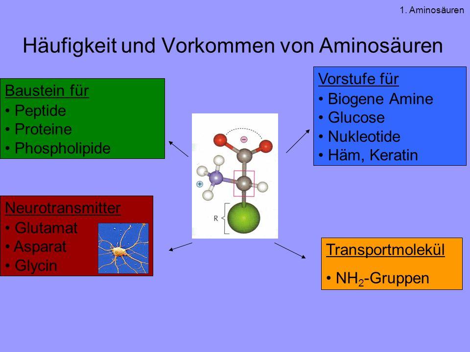 Häufigkeit und Vorkommen von Aminosäuren
