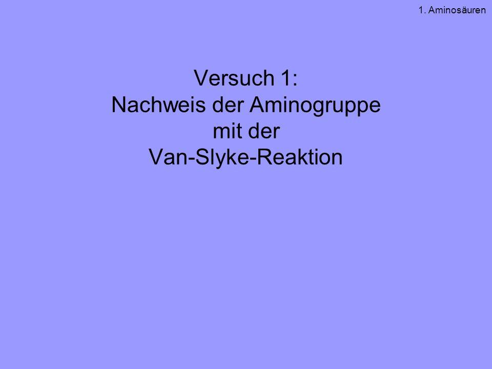 Versuch 1: Nachweis der Aminogruppe mit der Van-Slyke-Reaktion