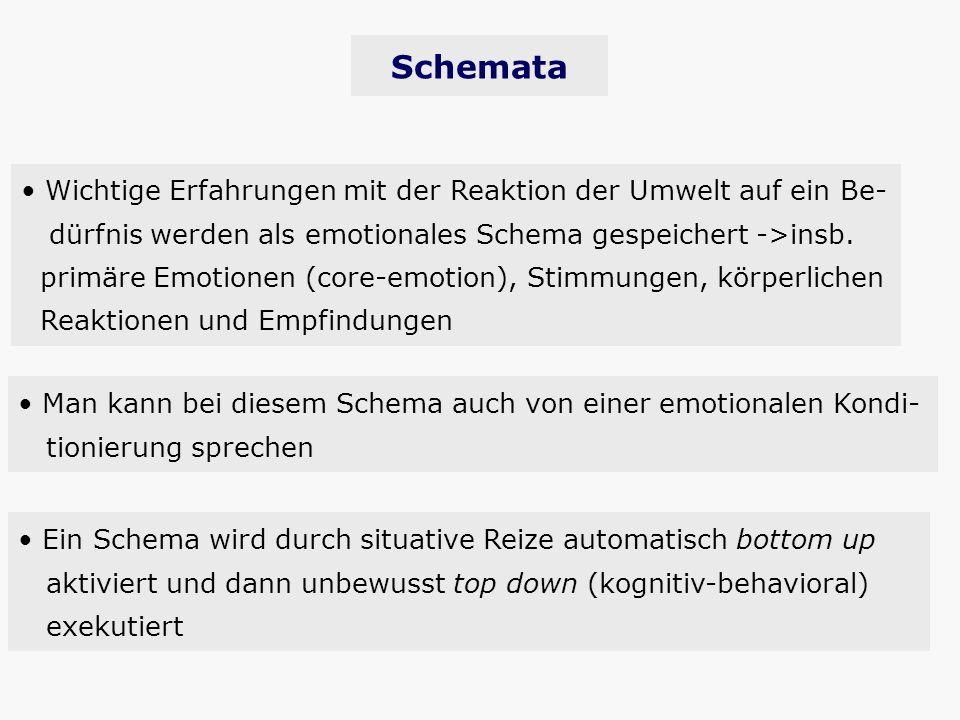 Schemata Wichtige Erfahrungen mit der Reaktion der Umwelt auf ein Be-