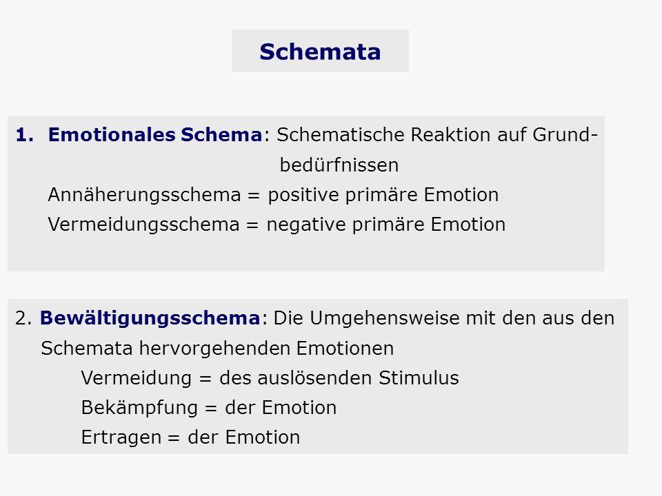 Schemata Emotionales Schema: Schematische Reaktion auf Grund-