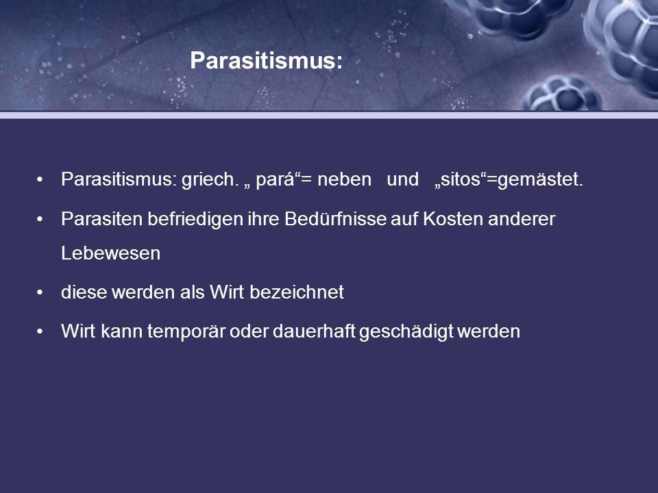 """Parasitismus:Parasitismus: griech. """" pará = neben und """"sitos =gemästet. Parasiten befriedigen ihre Bedürfnisse auf Kosten anderer Lebewesen."""