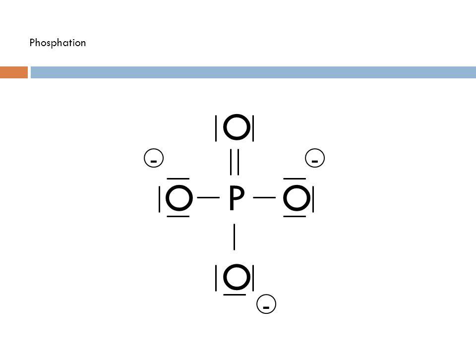 Phosphation O - - O P O O -