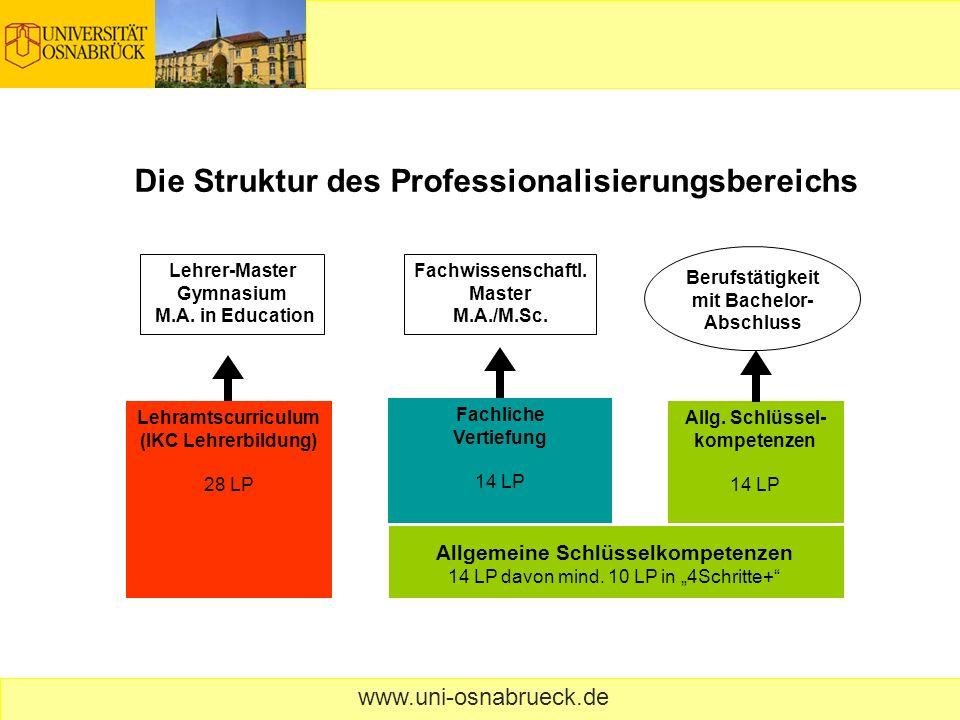 Die Struktur des Professionalisierungsbereichs