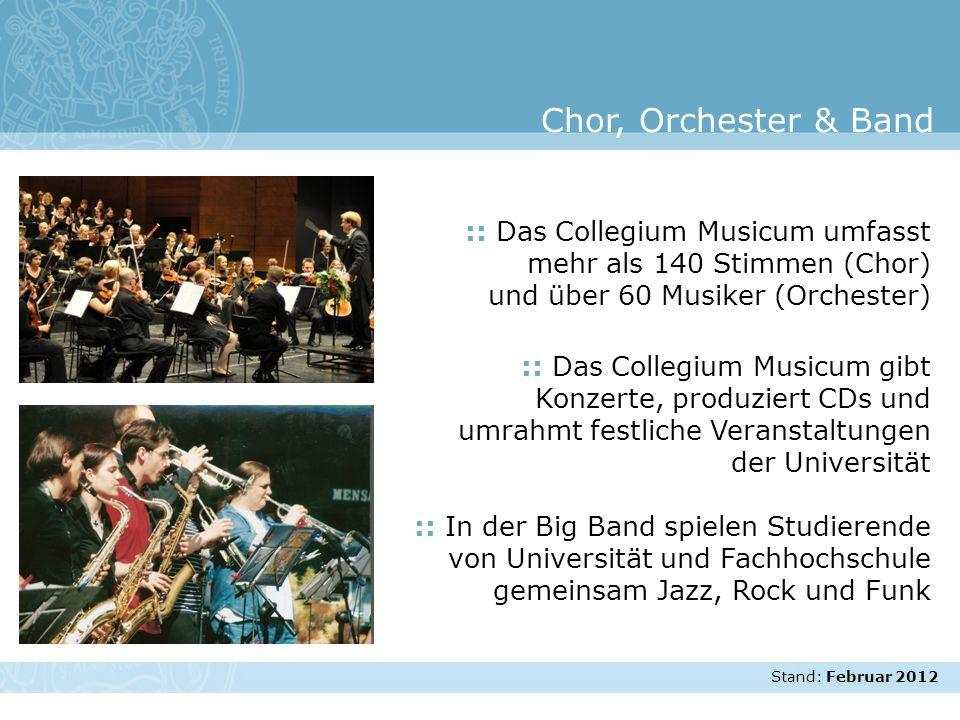 Chor, Orchester & Band :: Das Collegium Musicum umfasst