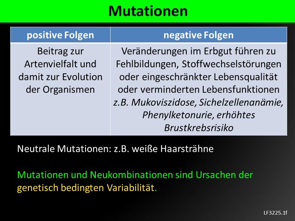 Beitrag zur Artenvielfalt und damit zur Evolution der Organismen