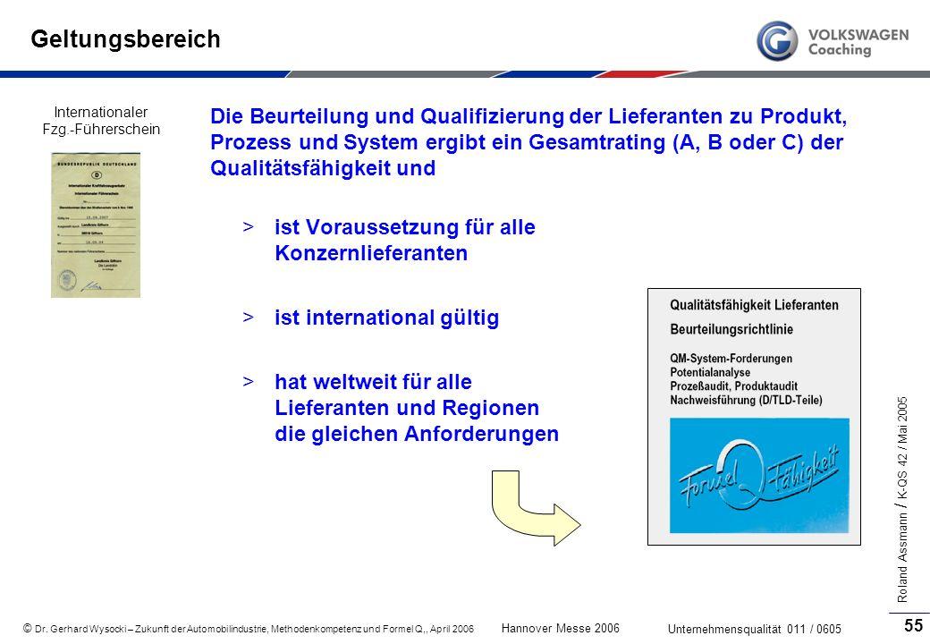GeltungsbereichInternationaler Fzg.-Führerschein.