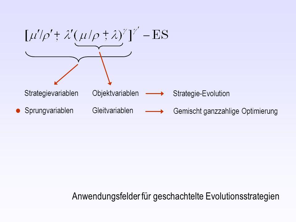 Anwendungsfelder für geschachtelte Evolutionsstrategien