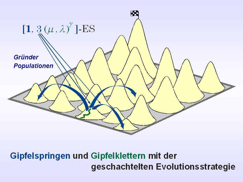 Gründer Populationen