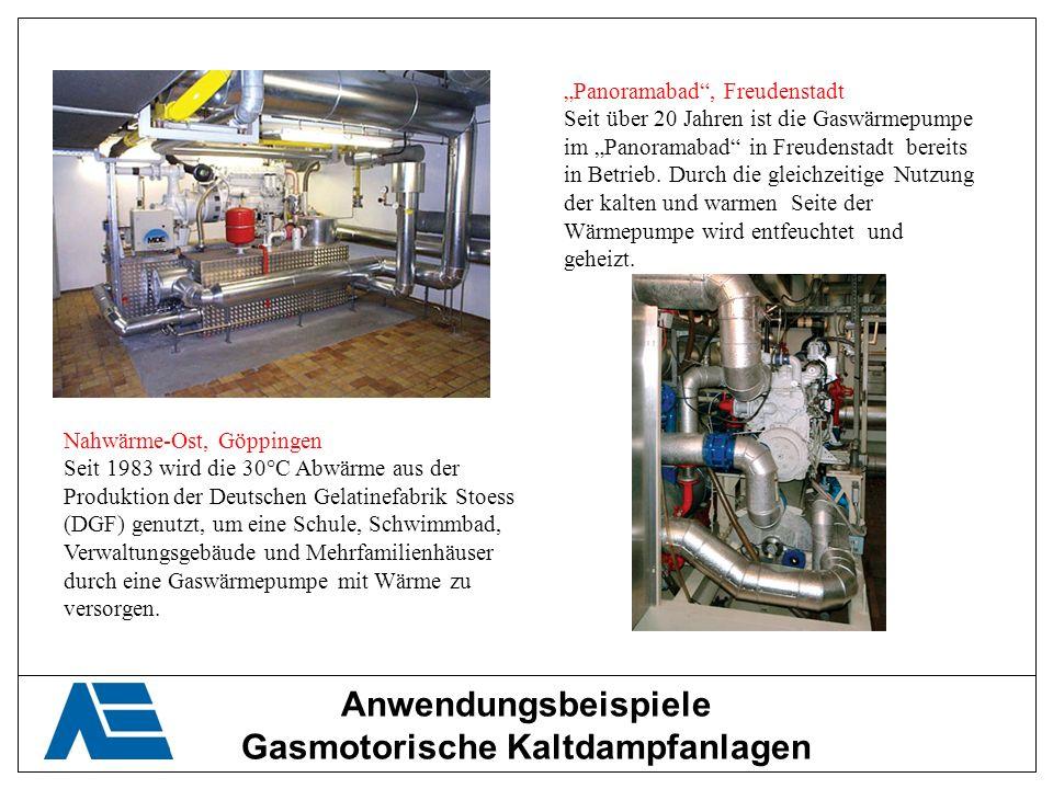 Gasmotorische Kaltdampfanlagen