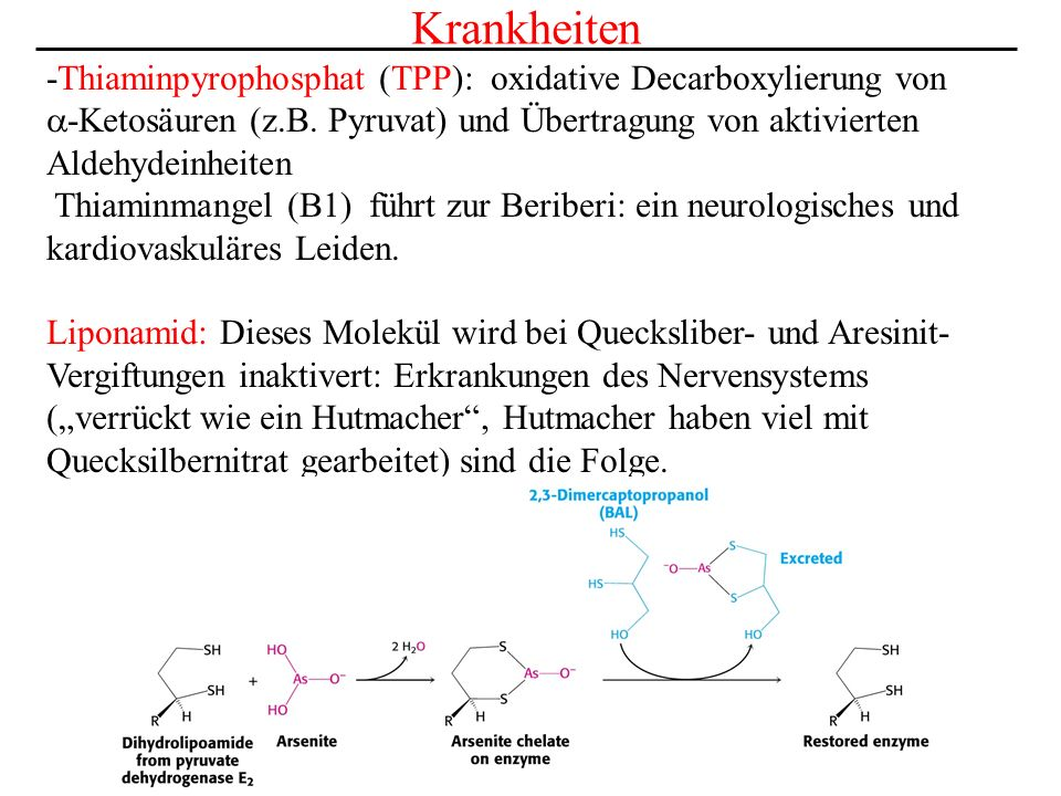 Krankheiten -Thiaminpyrophosphat (TPP): oxidative Decarboxylierung von