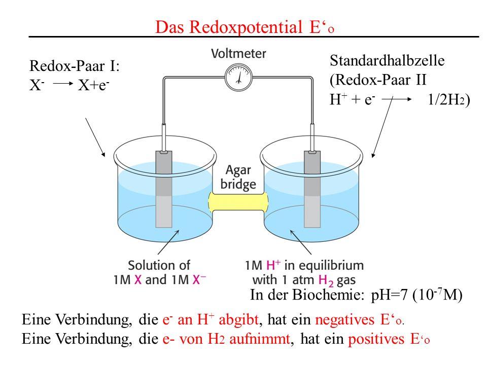 Das Redoxpotential E'o
