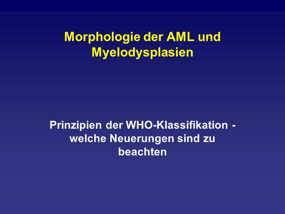 Morphologie der AML und Myelodysplasien