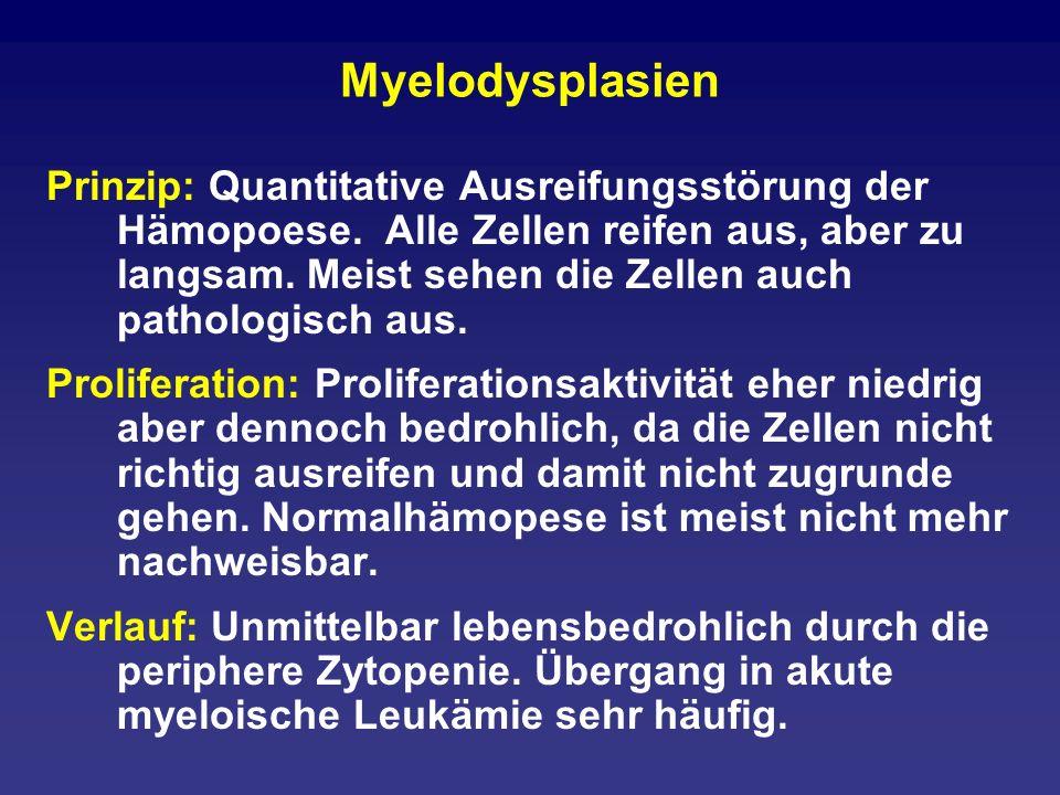 Myelodysplasien