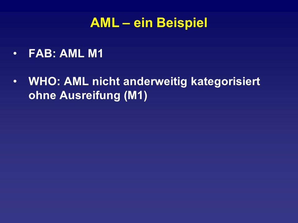 AML – ein Beispiel FAB: AML M1