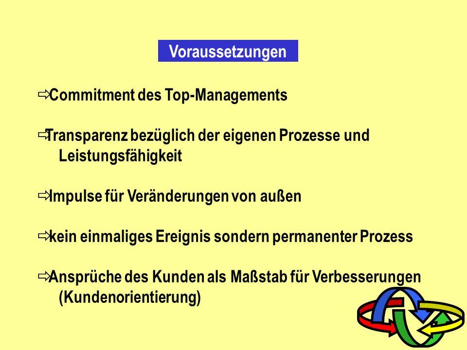 Voraussetzungen Commitment des Top-Managements
