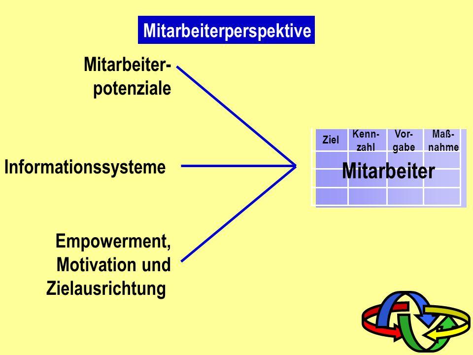 Mitarbeiter Mitarbeiter- potenziale Informationssysteme Empowerment,