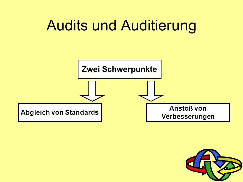 Audits und Auditierung