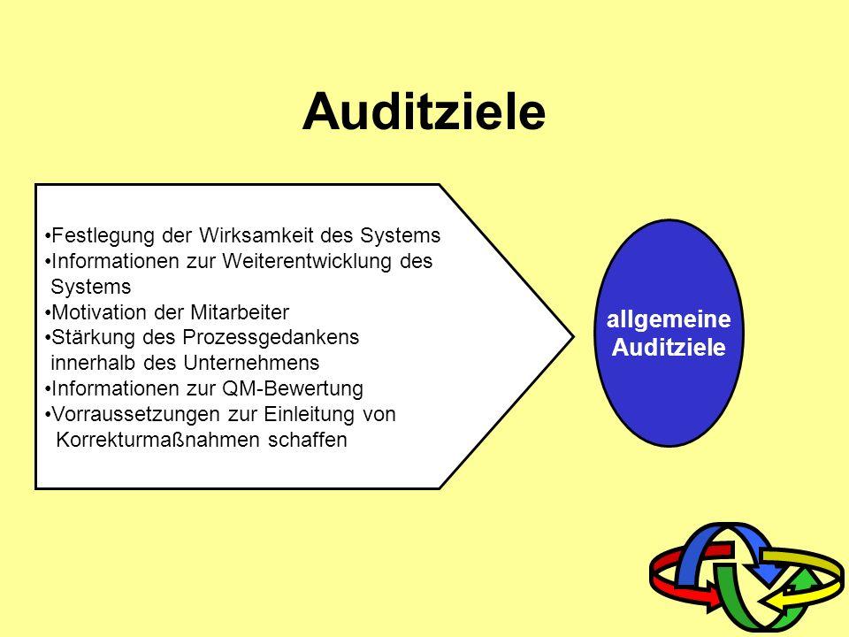 allgemeine Auditziele