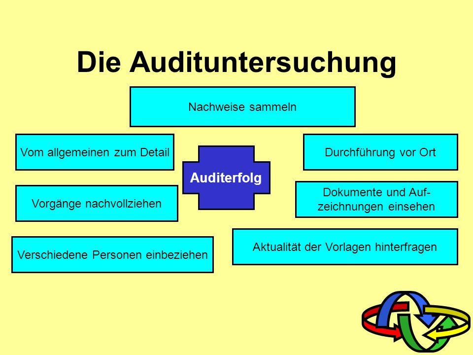Die Audituntersuchung