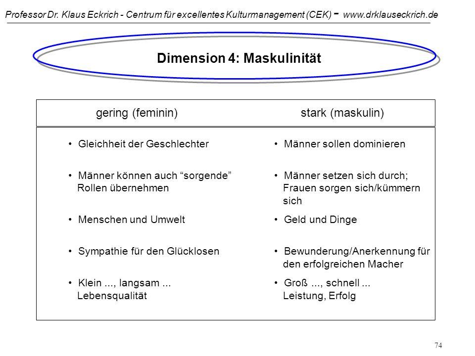 Dimension 4: Maskulinität