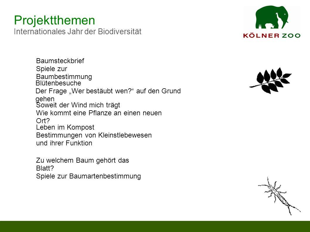 Projektthemen Internationales Jahr der Biodiversität Baumsteckbrief