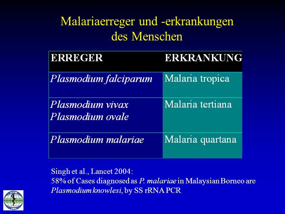 Malariaerreger und -erkrankungen des Menschen