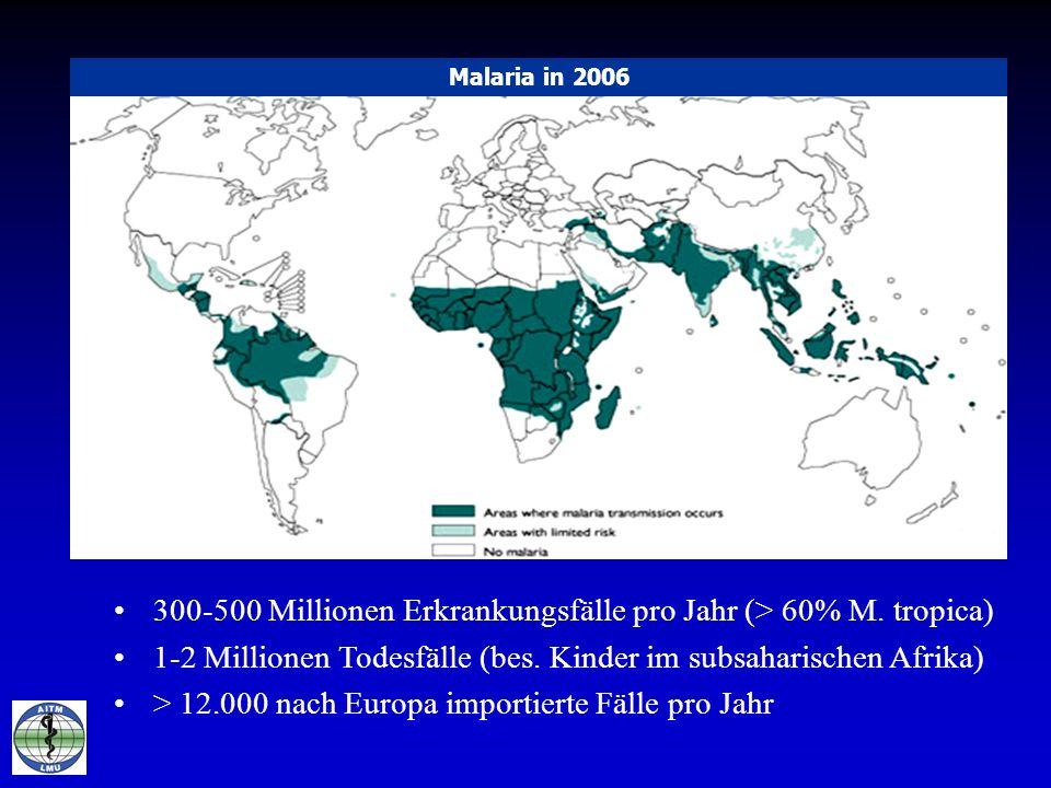 300-500 Millionen Erkrankungsfälle pro Jahr (> 60% M. tropica)
