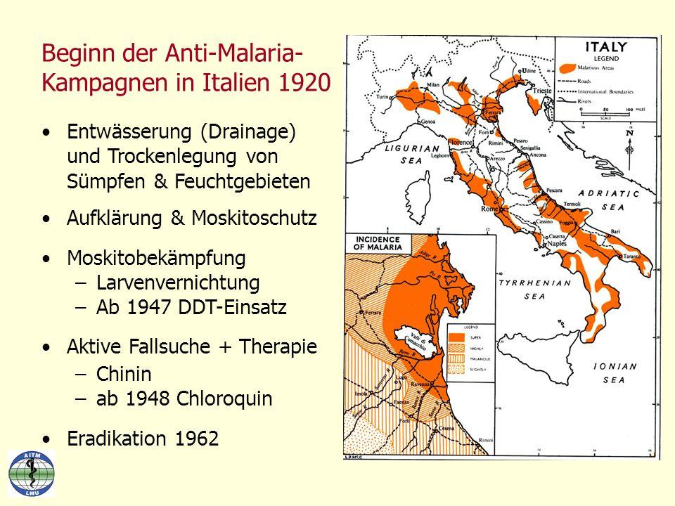 Beginn der Anti-Malaria- Kampagnen in Italien 1920