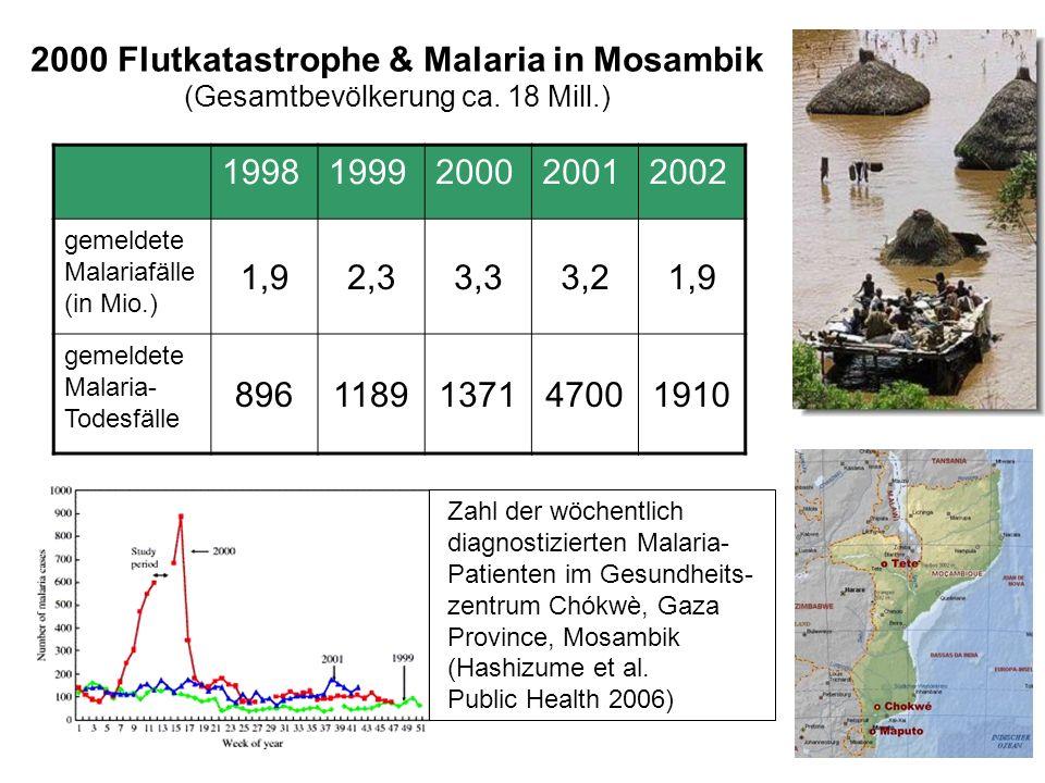 2000 Flutkatastrophe & Malaria in Mosambik (Gesamtbevölkerung ca