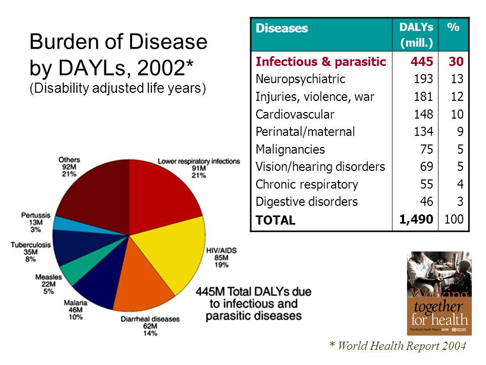 Burden of Disease by DAYLs, 2002* (Disability adjusted life years)