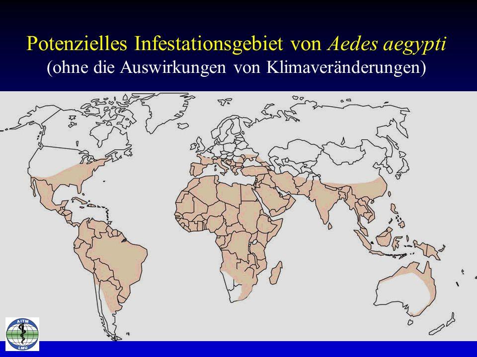 Potenzielles Infestationsgebiet von Aedes aegypti