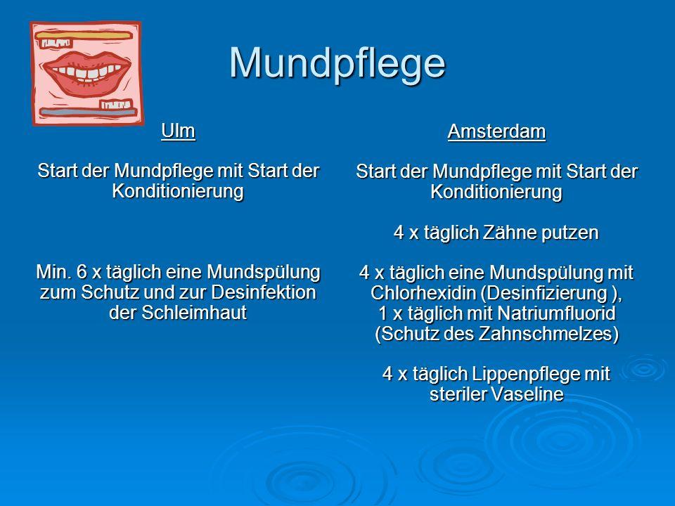 Mundpflege Ulm Amsterdam