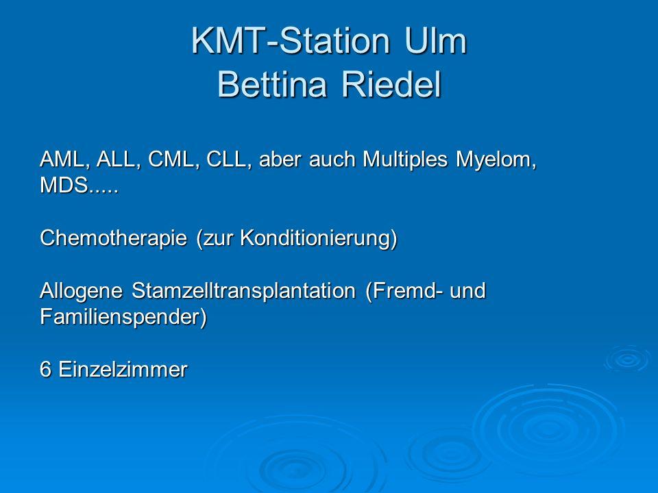KMT-Station Ulm Bettina Riedel