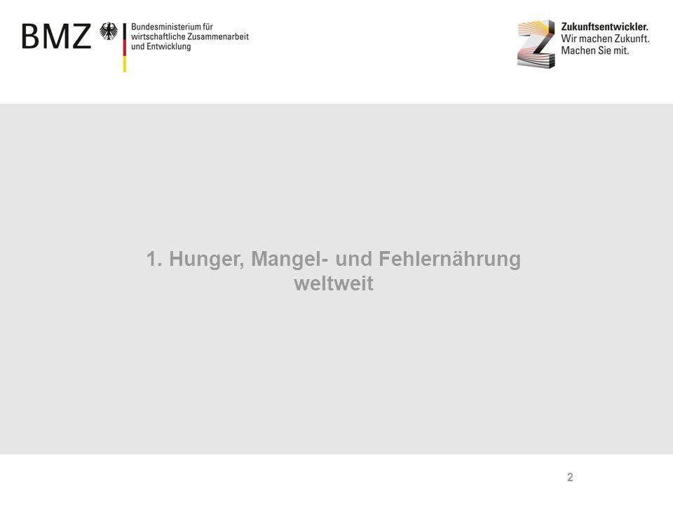 1. Hunger, Mangel- und Fehlernährung weltweit