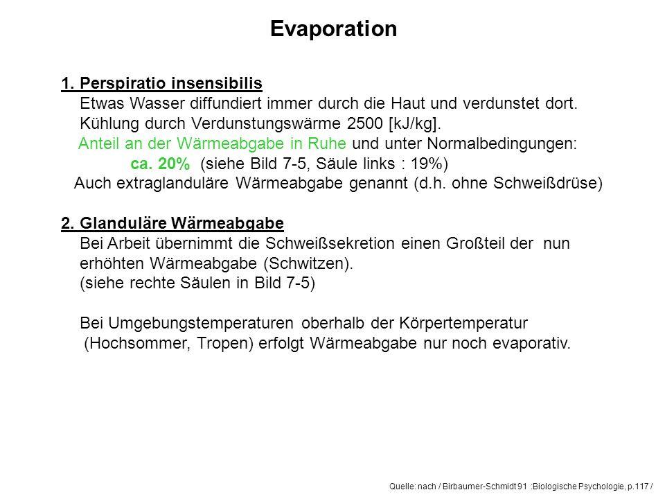 Evaporation 1. Perspiratio insensibilis