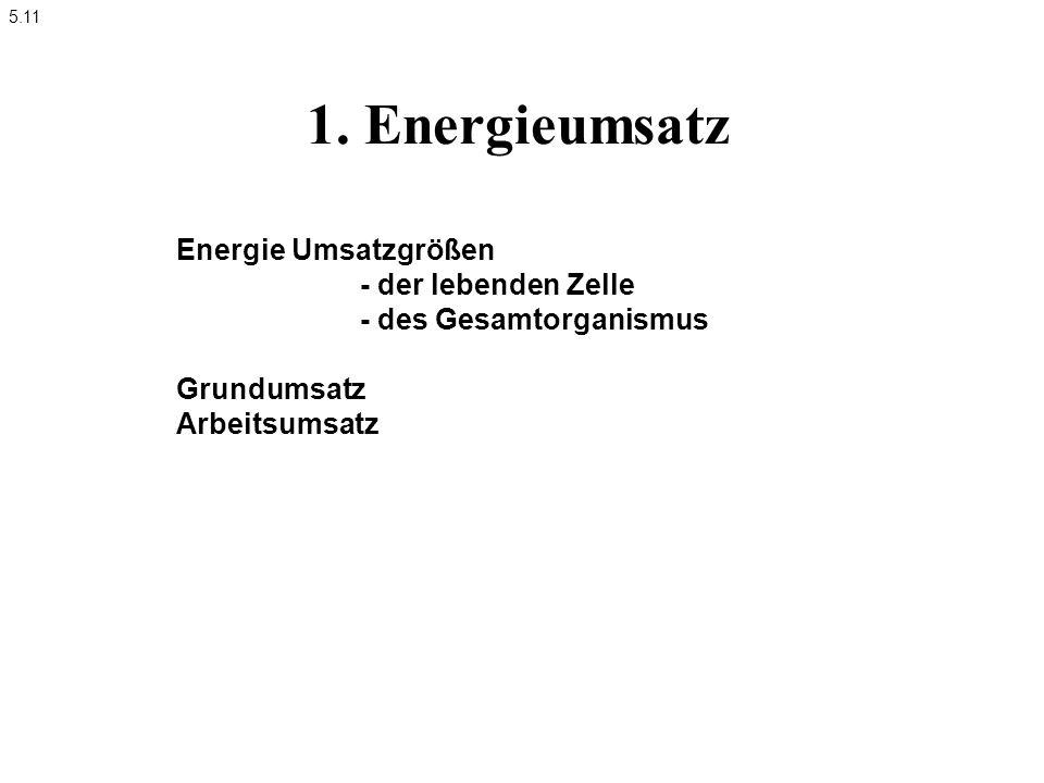 1. Energieumsatz Energie Umsatzgrößen - der lebenden Zelle