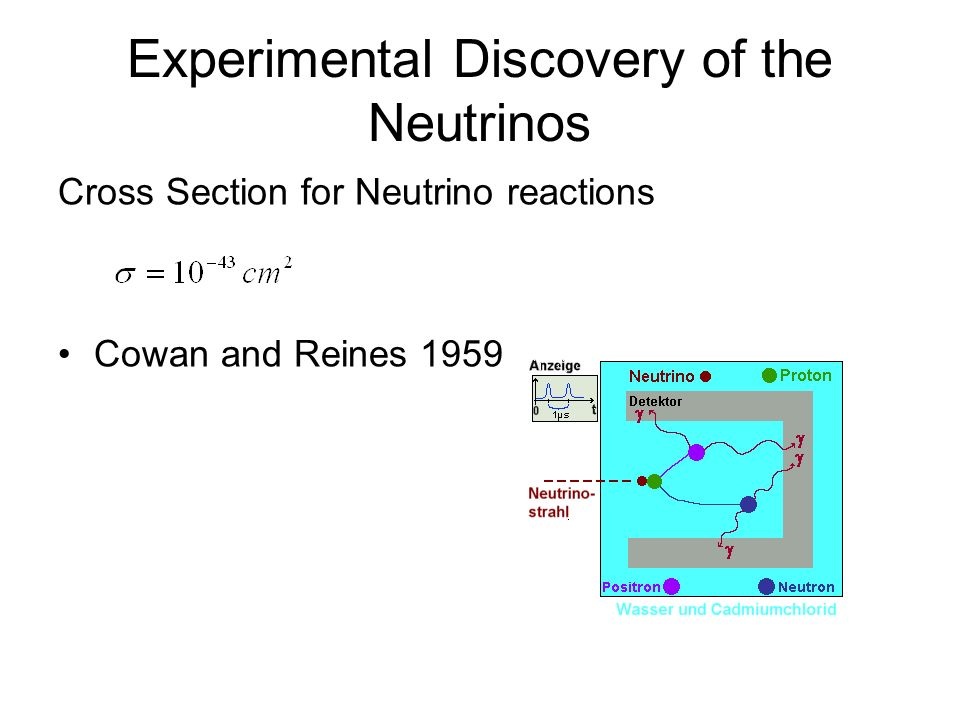 Experimental Discovery of the Neutrinos