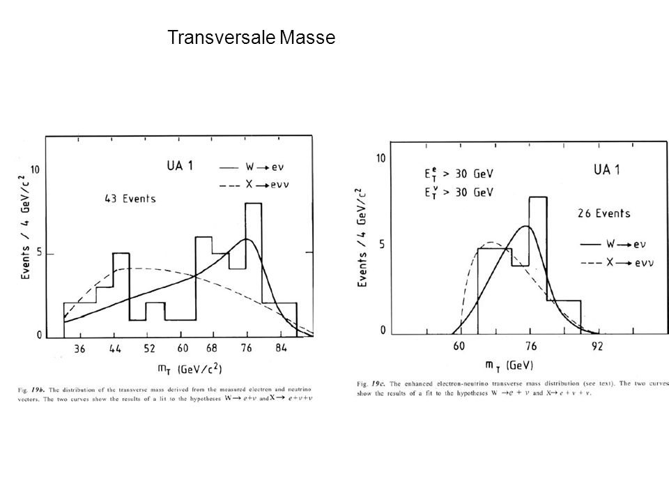 Transversale Masse