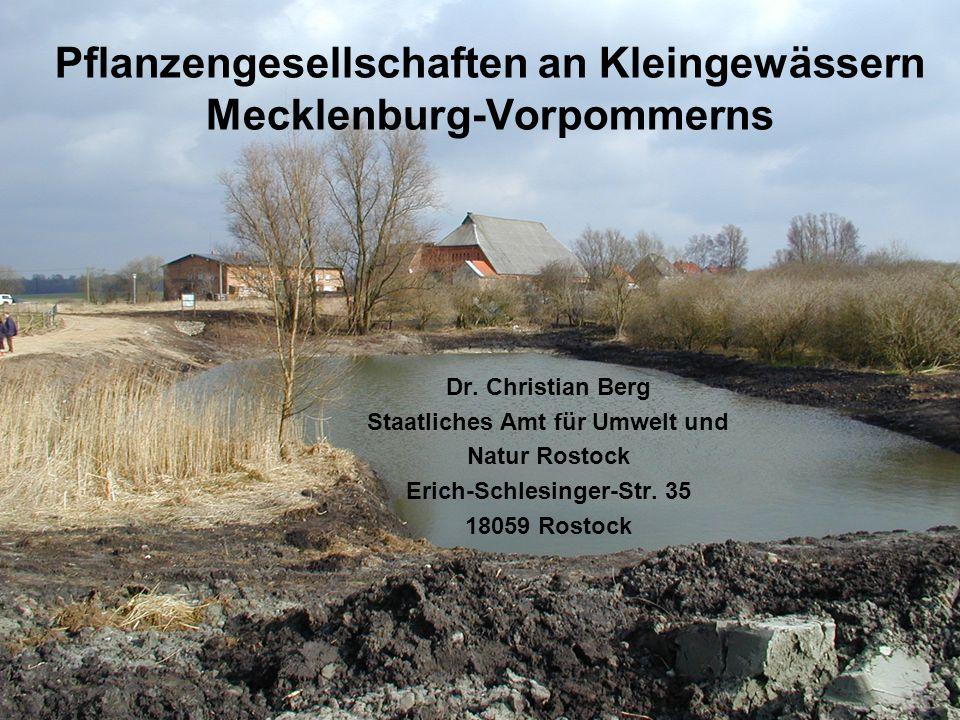 Pflanzengesellschaften an Kleingewässern Mecklenburg-Vorpommerns
